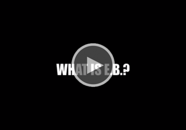 "Screenshot of ""What is EB?"" (Part I)"